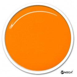UV Gel  barvni NEON 003